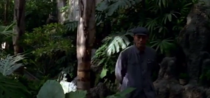 Screenshot (3)