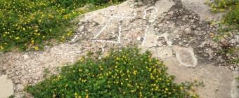 Mosaic at Selinunte